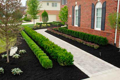 black ground mulch
